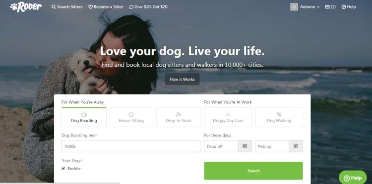 Rover.com dashboard