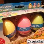 Easter Basket Idea: Hatch & Grow Your Own Easter Bunny, Chick or Duck!