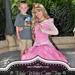 Making Dreams (and Wishes) Come True: My Son's Wish Story