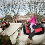 Kick it Up with Santa and his Reinsteer at the 4th Annual Camp Bowie Christmas, Dec. 14