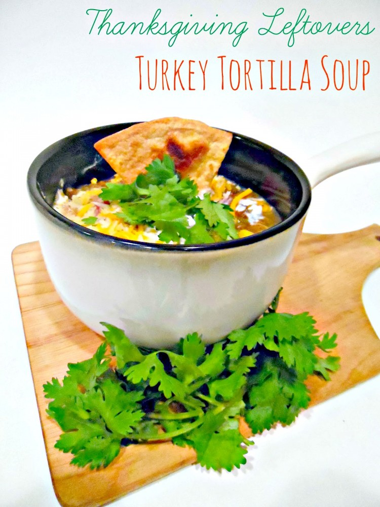 TurkeyTortillaSoup
