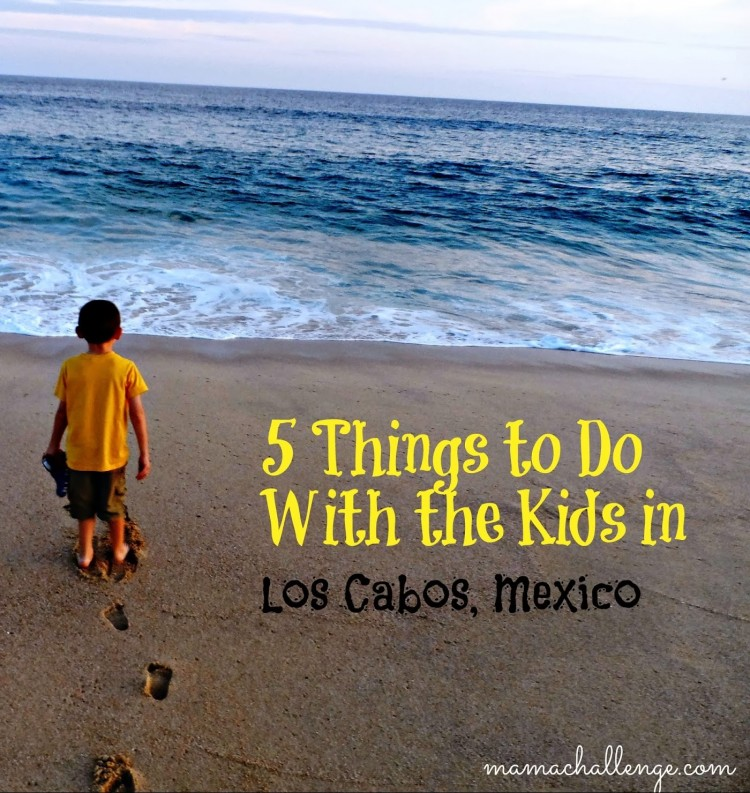 ThingstoDoKidsLosCabosMx
