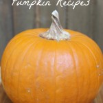 Three Must-Have Pumpkin Recipes for Fall
