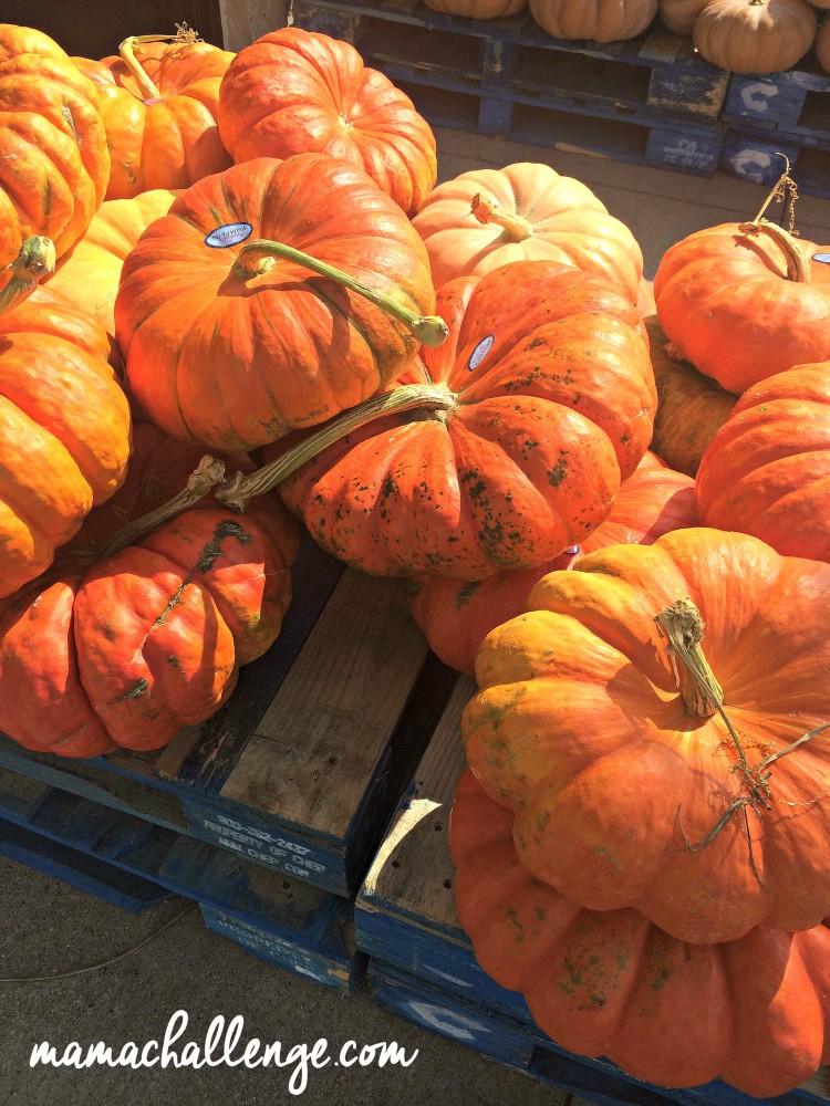 PumpkinsMarketStreet