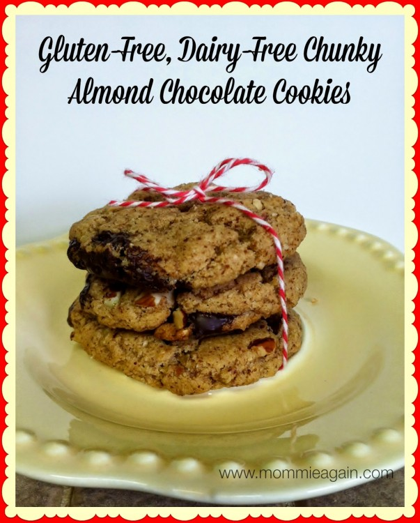 http://www.mommieagain.com/2014/11/easy-delicious-gluten-free-dairy-free.html