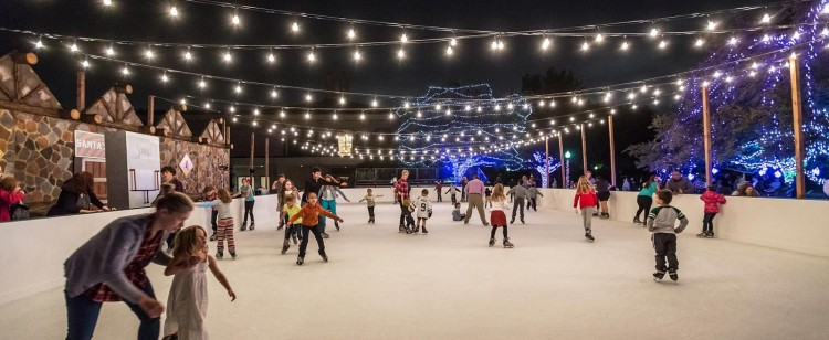 Ice Rink-Anatole-Dallas