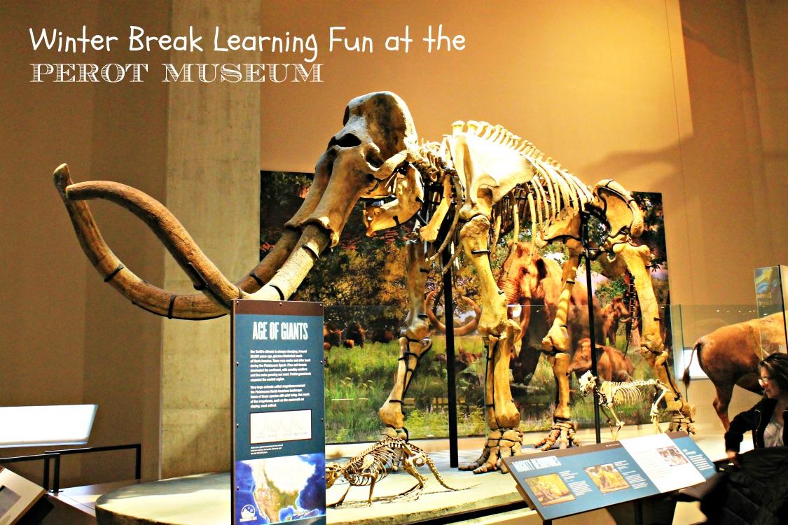 Winter-Break-learning-Fun