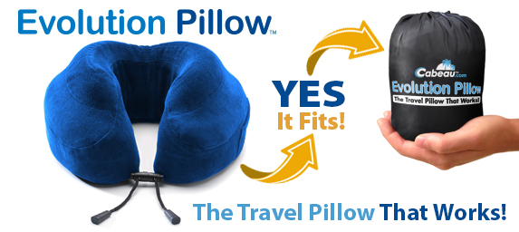 Evolution-Pillow