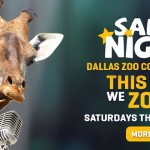 Go Wild at Dallas Zoo Safari Nights {Giveaway}