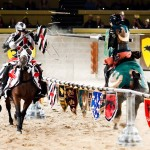 Special Summer Offers at Medieval Times