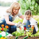 Down & Dirty DIY Gardening Tips from Calloway's Nursery