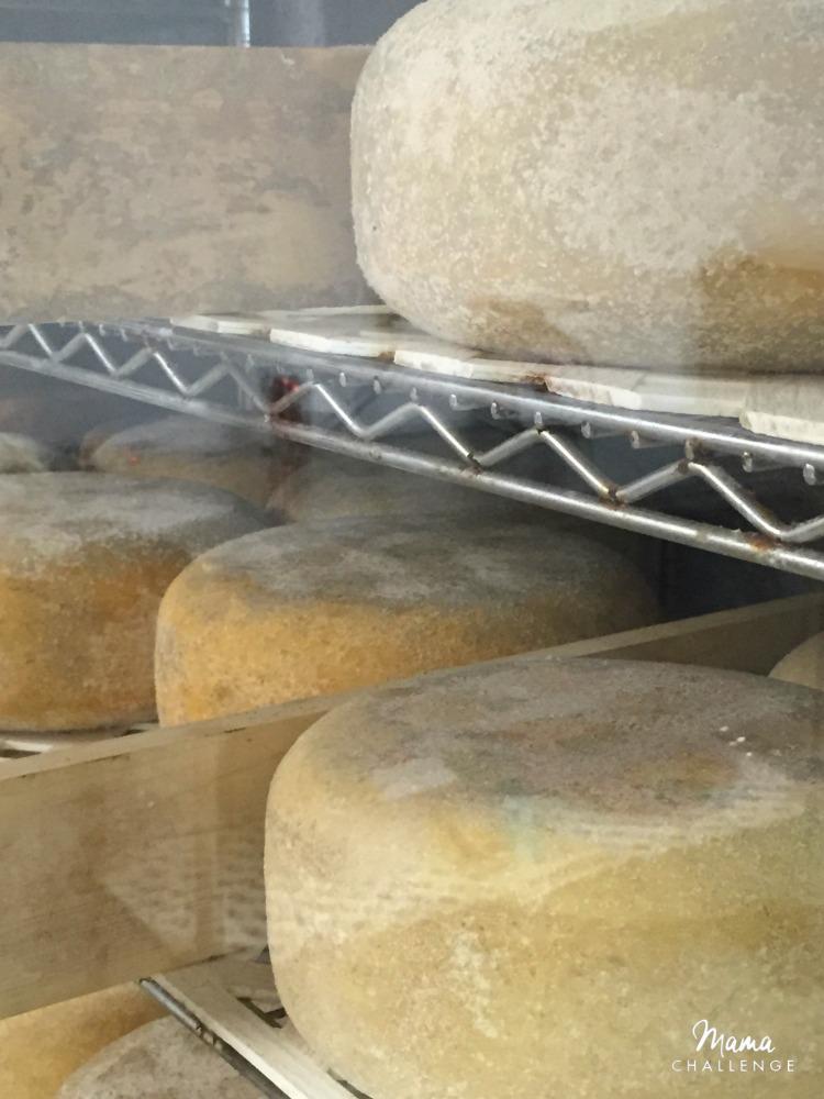 Eagle-Mountain-Cheese