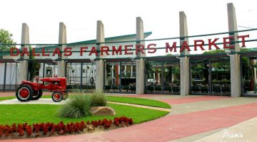 Love Where You Live: Dallas Farmers Market #FromHereforHere