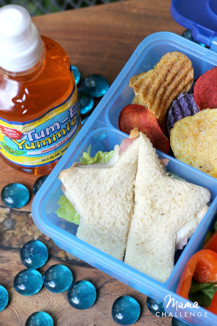 5 Real Tips for Back to School Bento Box Lunches13