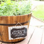 Your Own Piece of Magnolia: How to Plant a Joanna Gaines-Inspired Herb Garden