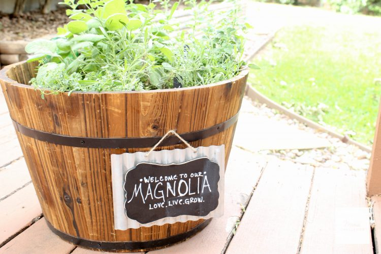 Magnolia-Herb-Garden (40 of 18)