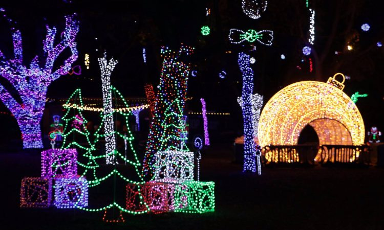 Holiday zoo lights